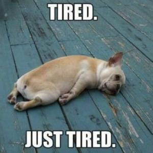 アタシだって、疲れるんですっ