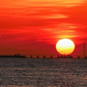 春の絶景:夕日に輝く大橋♪