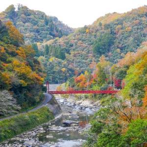 紅葉の秋:近場の紅葉スポット