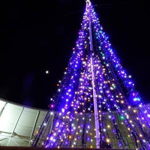 空高く輝くクリスマスツリー