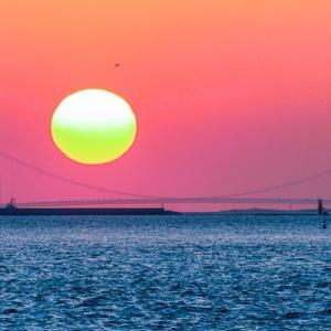 春の絶景:でっかい夕日と明石海峡大橋