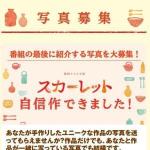 朝ドラ【スカーレット】視聴中!