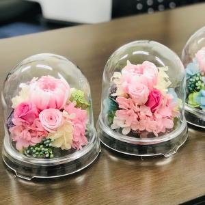 ドーム型お供え花