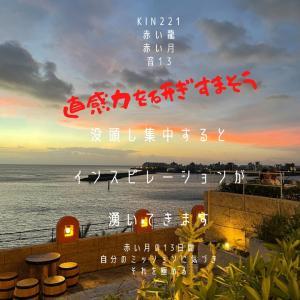 マヤ暦KIN221の今日は… 『直感力を研ぎすまそう』赤い龍  赤い月  音13