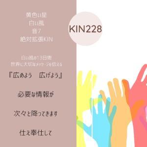 マヤ暦KIN 228の今日は…  『広めよう  広げよう』黄色い星  白い風  音7
