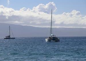 憧れのハワイ・マウイ島の旅⑧ ビーチエントリークルーズ@カアナパリビーチ