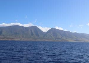 憧れのハワイ・マウイ島の旅⑲ ホエールウォッチングⅤ帰港