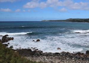 憧れのハワイ・マウイ島の旅25ドラゴンズティース&ホエールウォッチング