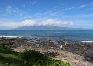憧れのハワイ・マウイ島の旅32全米1美しい『ナピリ・ビーチ』でブランチ
