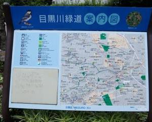 2021東京河川ポタリング『目黒川緑道』