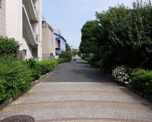 2021東京世田谷ポタリング『烏山川緑道』②