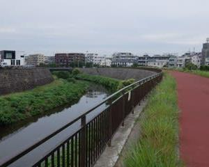 2021東京河川ポタリング『野川サイクリングロード』①「世田谷区」
