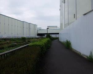 2021東京河川ポタリング『野川サイクリングロード』②「世田谷区」