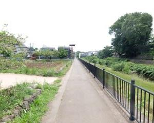 2021東京河川ポタリング『野川サイクリングロード』⑤「三鷹市~小金井市」