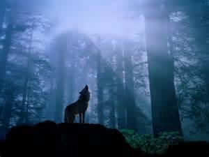 おやすみなさい!モラハラという吸血鬼と決別するとき
