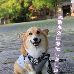 久しぶりなお散歩会~☆