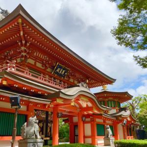 千葉神社へ月詣りへ‼︎(^O^☆♪