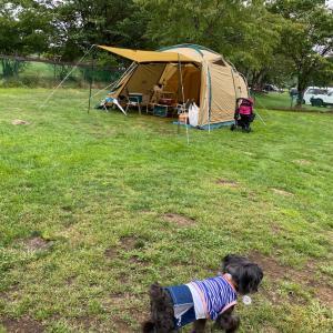 初めてのお泊まりキャンプ♪①