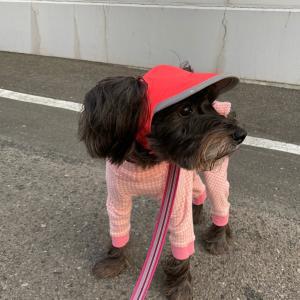 新しいお帽子でピンクコーデ♪