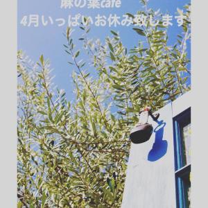 麻の葉cafeは4月いっぱいお休みします