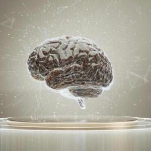 脳の断捨離って何?