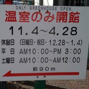 冬の円山動物園もイイかも