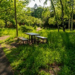 札幌、豊平公園は1か月ぶり