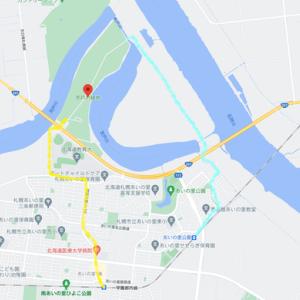 茨戸川緑地はトビが撮り放題