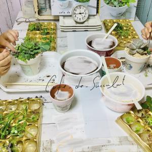 受講生さんの多肉寄せ植え作品のご紹介です。多肉植物教室 千葉 埼玉 神奈川 東京