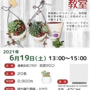 横須賀市産業交流プラザ⭐️多肉植物寄せ植えワークショップ♦️