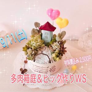 千葉市花の美術館♦️多肉箱庭&アクリルピック作り寄せ植えワークショップご案内⭐️