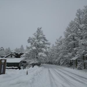 驚き・・・極寒の別荘地では、、、。