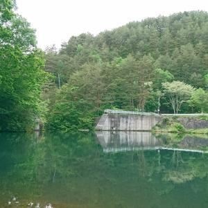 シナノユキマス釣り2021(@立岩湖)Vol.4-2