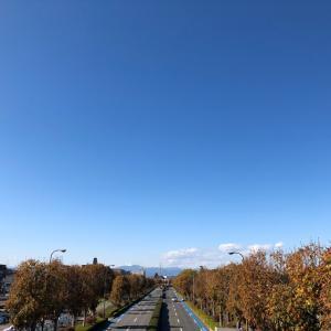 秋晴れと紅葉の昭和記念公園へ