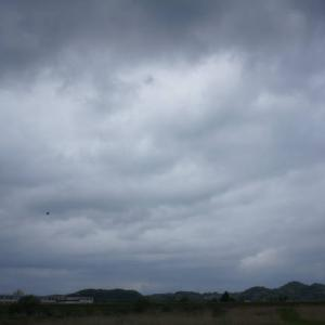 雨が降るまでに