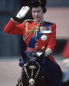 HIPPO馬 エリザベス女王杯 Queen Elizabeth II Cup