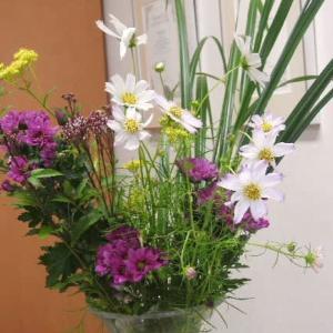 コスモスの生け花と白色ムクゲ♪