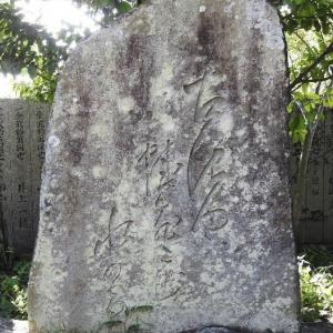 松尾芭蕉の句碑と若い宮司さんと89歳、85歳の方と八ッ鹿踊りの説明板とアルストロメリアの花♪