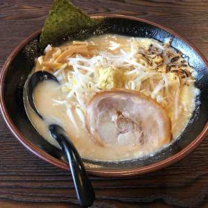 ラーメン日記 味噌の金子 愛川店