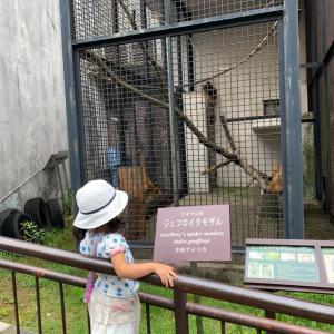 念願の動物園へ。