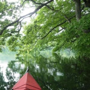 7月連休は、いつもの青木湖で!♪ (Part2)