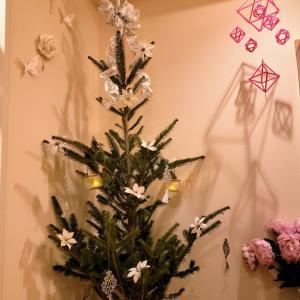 11/21販売開始 IKEAモミの木