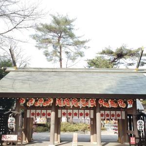 御朱印おばさんのお散歩日記 ~櫻木神社~