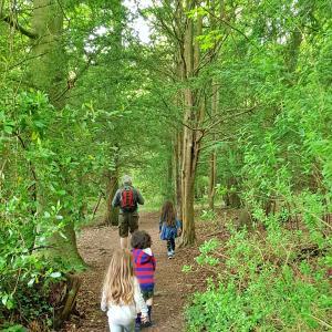 イギリスらしいお散歩道とフリーレンジ育児 & 家庭学習30日目
