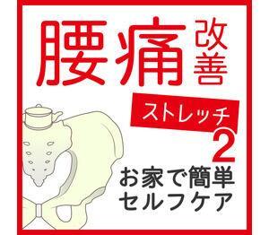 お家で簡単セルフケア☆腰痛改善ストレッチ2