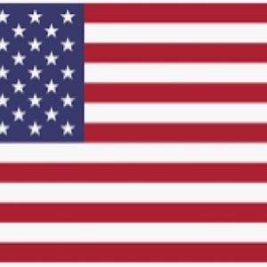 米国もコロナの第3波中。 日本と同期している。
