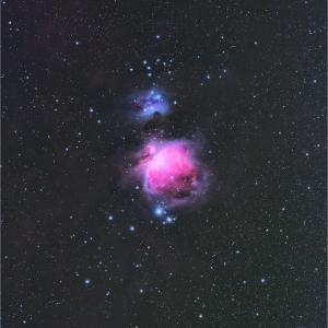 M42オリオン大星雲を250mmで小星雲に撮ったッ!