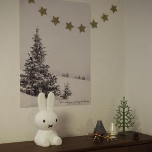 まだ間に合う♪クリスマス準備と大感謝祭ポチレポ