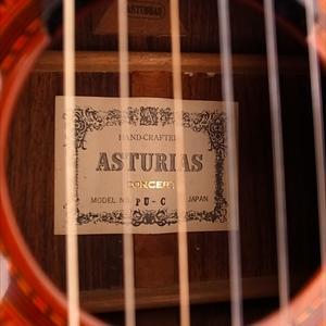謎のガットギター