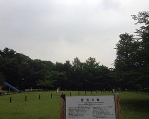 負荷をかけつつ・・・&「菅刈公園」